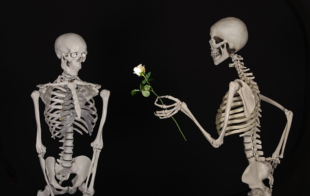 kostry s růží