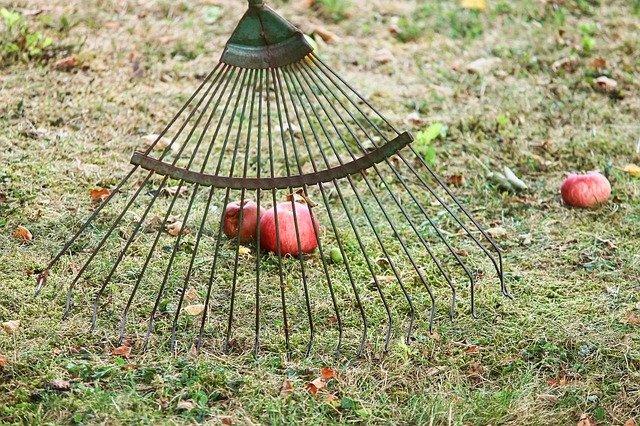 hrábě a jablka